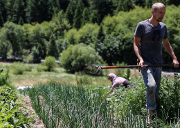 Organic farming at Full Bloom